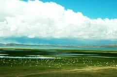 Scenery in Tibet Stock Photos