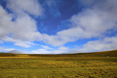 The scenery of Tibet stock photography