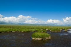 Scenery of Tibetan plateau Royalty Free Stock Photo