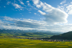 Scenery of Tibetan plateau. The scenery of County Menyuan Province Qinghai China. It is the beautiful natural scenery and culture landscape of Qinghai-Tibet Stock Photos