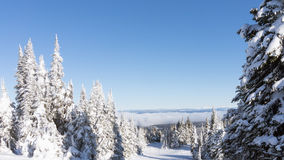 Scenery from the top of Sun Peaks Stock Images