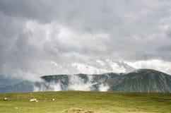 Scenery Transalpina Stock Images