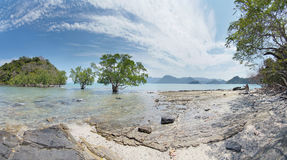 Scenery with trees and islands. Beautiful scenery with trees and islands Stock Photography