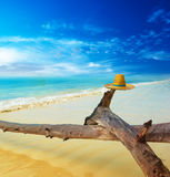Scenery tropical landscape Stock Photo