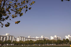 Scenery of Tsinghua University. Royalty Free Stock Images