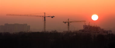 Scenery with two cranes Royalty Free Stock Images