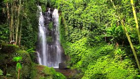 Scenery video Natural Waterfall Munduk with clean cool water hidden in tropical jungle island Bali stock video