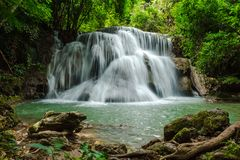 Scenery view. beautiful waterfall among the tree in the deep for. Est are background. this image for nature, landscape, forest, wild concept Stock Images