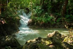 Scenery view. beautiful waterfall among the tree in the forest a. Scenery view. beautiful waterfall among the tree in the deep forest are background. this image stock image