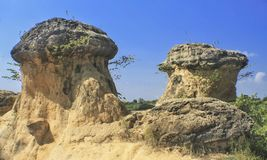 Scenery view of mushroom hill stock photography