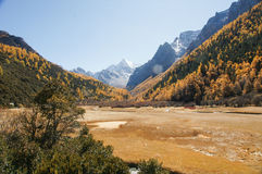 Scenery of Yading in Daocheng county, Sichuan of China. Autumn Landscape Royalty Free Stock Images