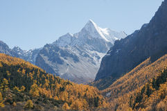 Scenery of Yading in Daocheng county, Sichuan of China. Autumn Landscape Stock Images