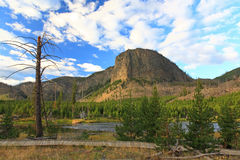The scenery of Yellowstone National Park Stock Images