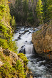 The scenery of Yellowstone National Park Royalty Free Stock Photos