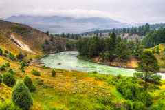 The scenery of Yellowstone National Park Royalty Free Stock Image