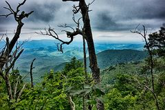 Scenes along appalachian trail in great smoky  mountains Royalty Free Stock Photos