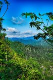 Scenes along appalachian trail in great smoky  mountains Royalty Free Stock Image