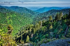 Scenes along appalachian trail in great smoky  mountains Stock Photography