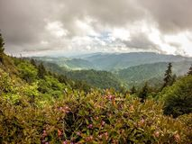 Scenes along appalachian trail in smoky mountains north carolina Stock Images