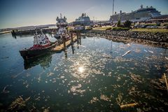 Scenes around Ogden Point cruise ship terminal in Victoria BC.Canada stock photo