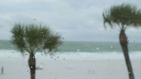 Scenes on the Beach as a Storm Approaches (4 of 6). Wind whips along a beach as a storm comes onto land from the ocean stock footage