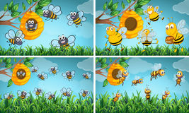 Scenes with bees and beehive. Illustration Royalty Free Stock Photography