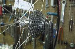 Scenes From a Bike Shop. Rear wheel cassette on work bench stock image