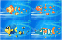 Scenes with fish under the water. Illustration Royalty Free Stock Photo