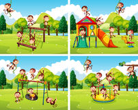 Scenes with monkeys playing in the park Stock Photography