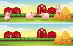 Scenes with pigs on the farm. Illustration Stock Photography
