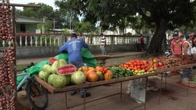 Scenes of the private farmer's market on Sundays in Cuba stock video footage