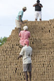 Scenes of rural life in India Royalty Free Stock Image