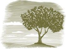 Scenetta del paesaggio dell'albero dell'intaglio in legno illustrazione vettoriale