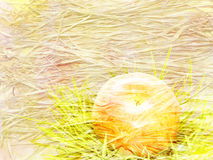 Scenic abstract background with straw and apple Stock Images