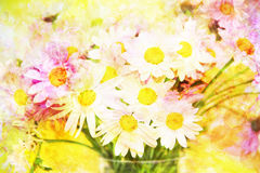 Scenic abstract bouquet with daisies made with color filters Royalty Free Stock Photo