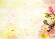 Scenic abstract floral background with wild roses Stock Photo