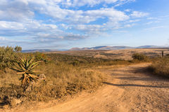 Scenic African Wilderness Wildlife Landscape Stock Image