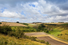Scenic agriculture Royalty Free Stock Images