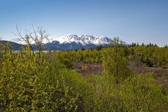 Scenic Alaskan wilderness Stock Photos
