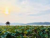 Scenic area of the West Lake royalty free stock photos