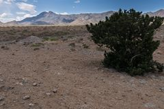 Scenic of the arid Florida Mountains , southwest New Mexico. A scenic of the eastern side of the Florida Mountains in southwest New Mexico luna usa arid royalty free stock photos