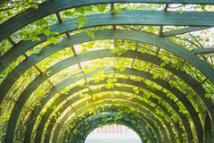 Scenic artificial arc in park.  Stock Photography