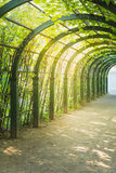 Scenic artificial arc in park.  Royalty Free Stock Photo