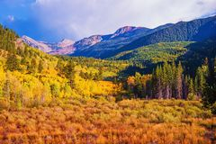 Scenic Aspen Lanscape Royalty Free Stock Photo