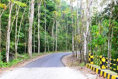 Scenic Asphalt Concrete Road through Dense Forest and Greenery in an Indian Village. This is a photograph of a scenic asphalt concrete road through dense forest royalty free stock image
