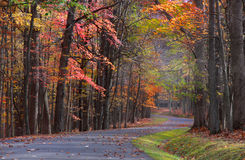Scenic autumn drive royalty free stock images