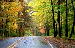 Scenic Autumn Drive Stock Photography