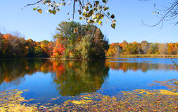 Scenic autumn lake Royalty Free Stock Photo