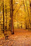 Scenic Autumn Landscape Royalty Free Stock Photos