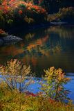 Scenic Autumn landscape in Allegheny Stock Photography